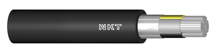 Image of N1XV 0,6/1 kV cable